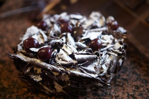 black forest cakes for chocoholics